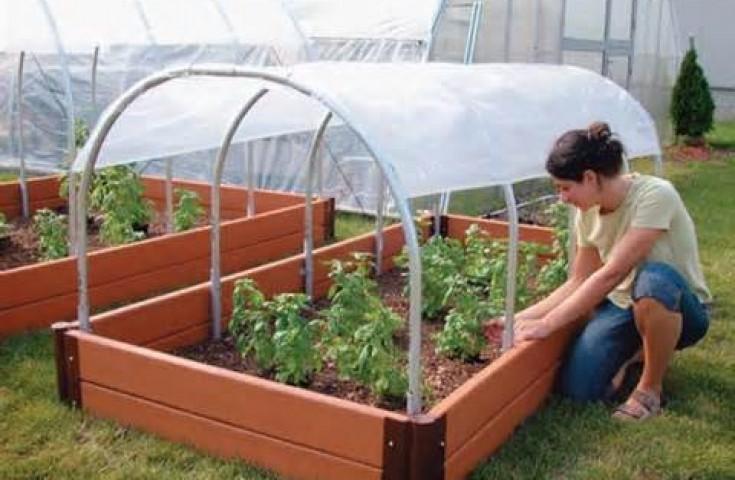 Сделать теплицу для помидоров своими руками