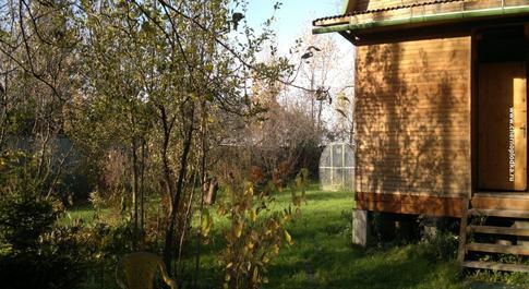 Лунный календарь садовода и огородника c 5 по 21 апреля